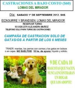 Campaña de castracion de mascotas